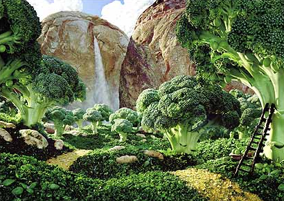 Carl Warner's broccoli forest