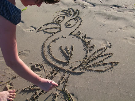 Drawing a bird on the sand