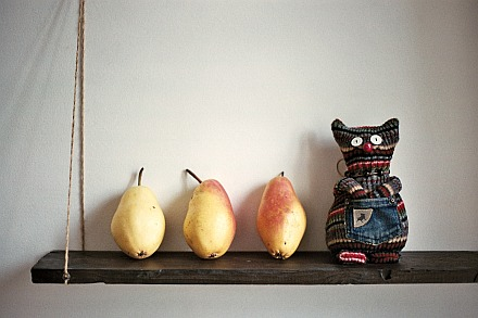 Alfonce-the-cat-with-pears